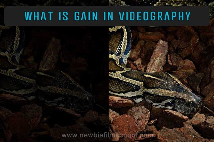 What is gain in video camera